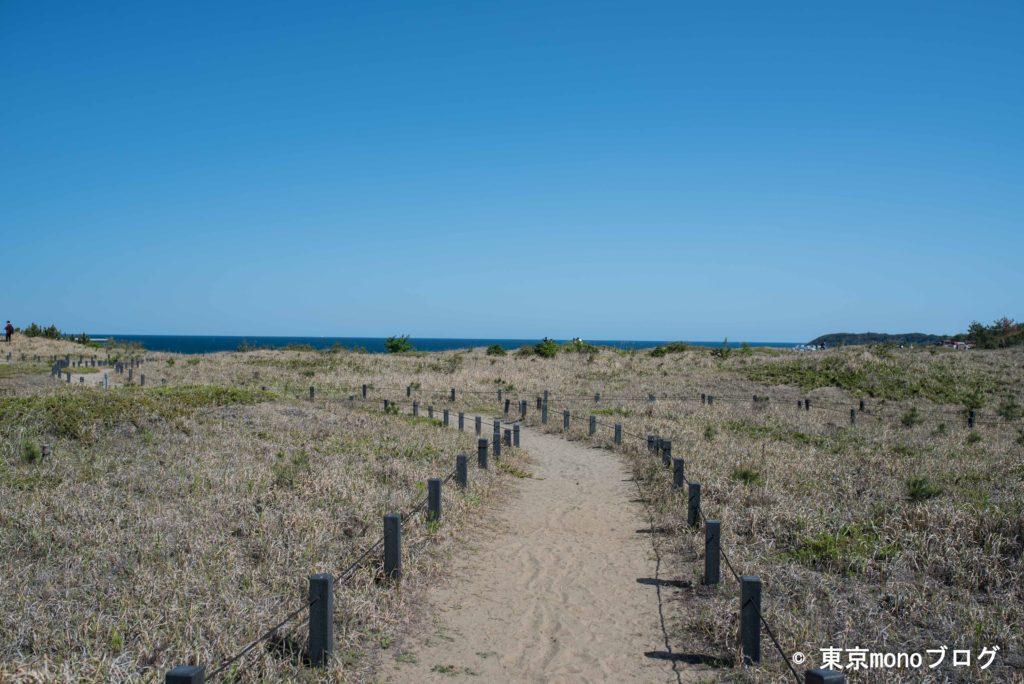国営ひたち海浜公園の砂丘エリア