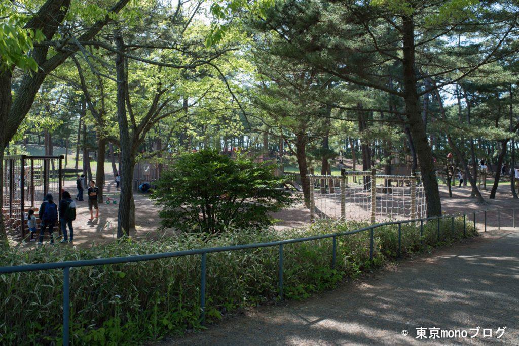 国営ひたち海浜公園の遊具