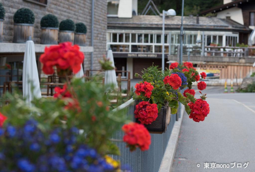 ホテルの入り口。やっぱり赤い綺麗な花が飾ってありました。