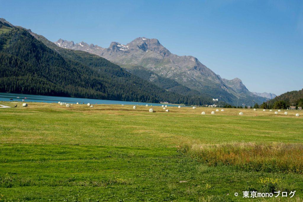 スイスの牧草地の景色